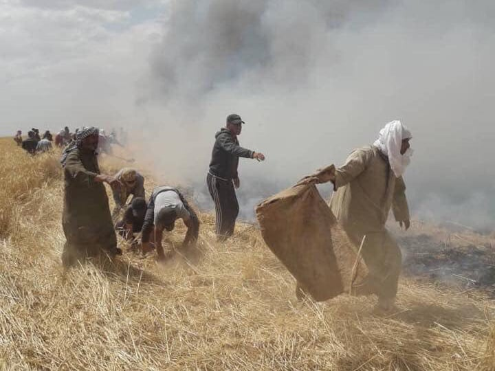 Les terroristes du YPG/PKK, brûle des terres agricoles arabes en Syrie