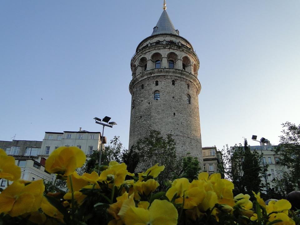 tulipe symbole de la Turquie