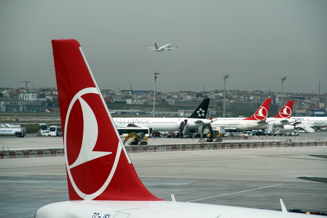 turkish airlines algérie